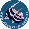 Aquarium Bach