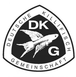 Killistammtisch Inn/Salzach