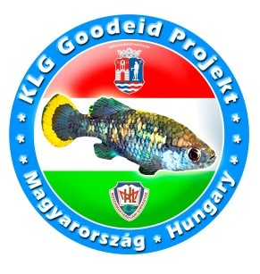 KLG Goodeid Project